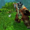 World of Warcraft leveling Guide
