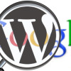 WordPress SEO Theme Developer