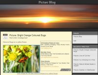 Beautiful Sunrise Premium AdSense Template