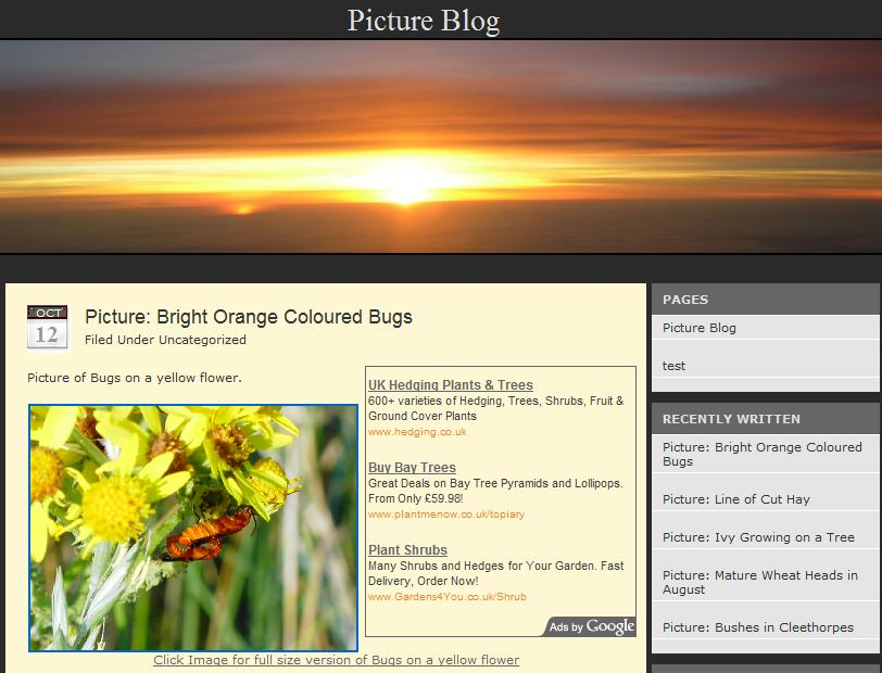 WordPress Beautiful Sunrise Theme