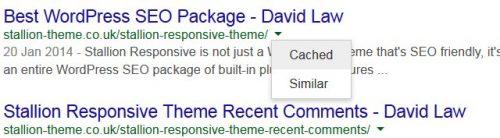 Check Google Cache
