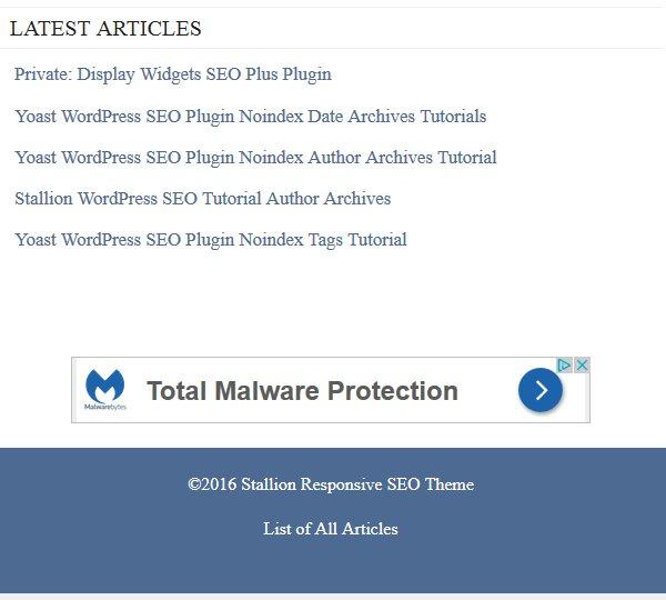 Display Widgets SEO Plus Plugin Category Hidden
