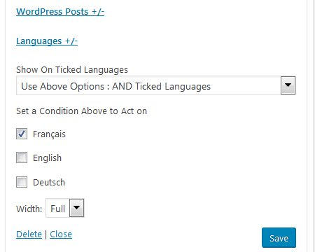Display Widgets SEO Plus Plugin WPML Language Options