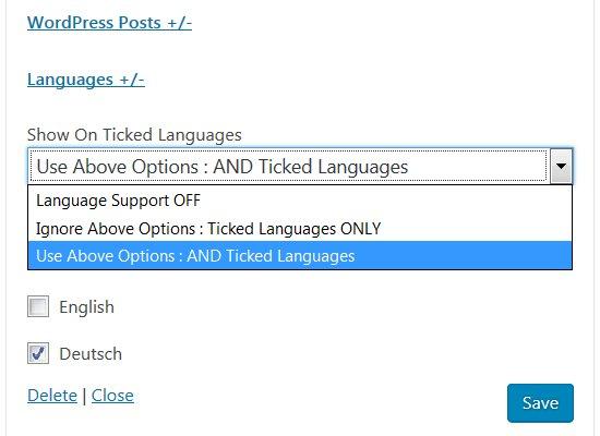 Display Widgets WPML Language Plugin Support