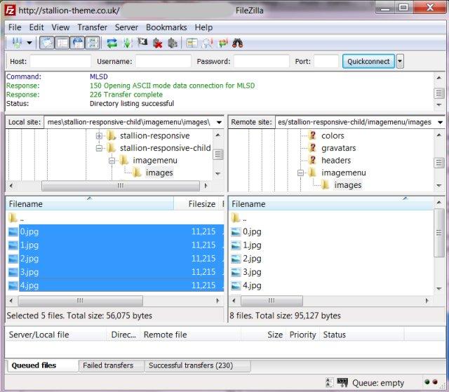 Filezilla FTP Upload