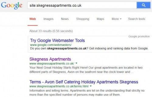 Google Domain Search