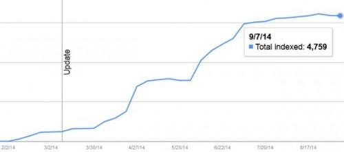 Google Index Status