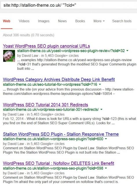 Google Site Search SEO Super Comments