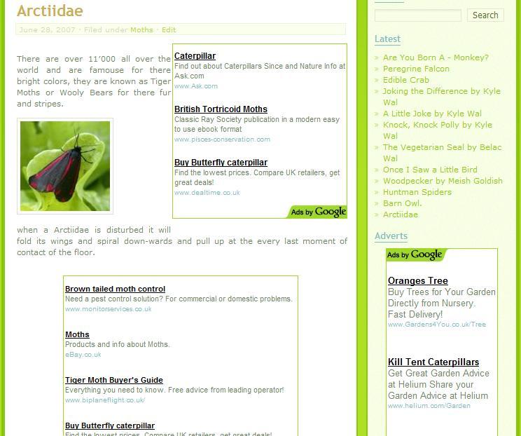 WordPress Greenery Theme Post