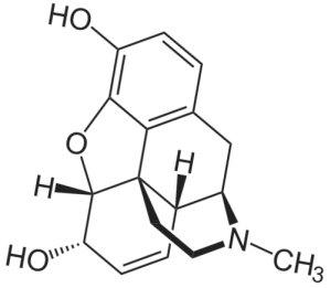 Morphine High