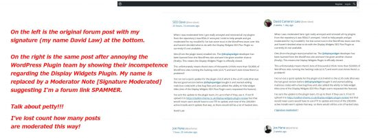 Petty WordPress Forum Moderation