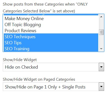 Silo SEO Widget Options
