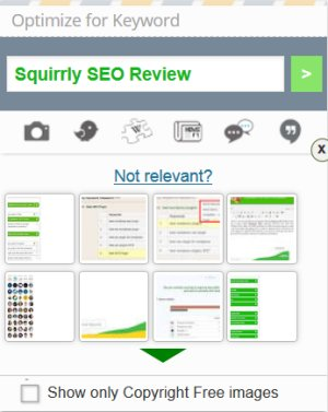 Squirrly SEO Review