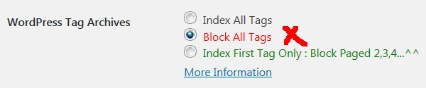 Stallion WordPress SEO Not Index Tags
