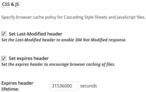 W3 Total Cache Browser Cache