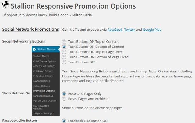 WordPress Promotion Theme
