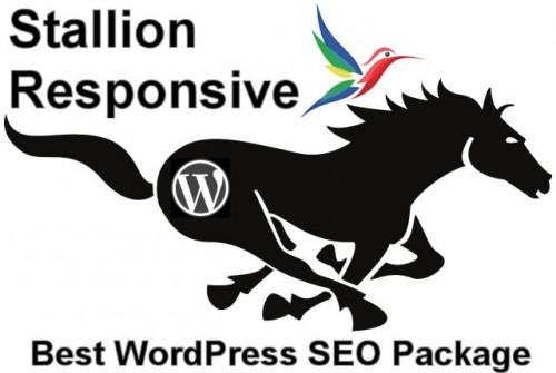 WordPress SEO Package