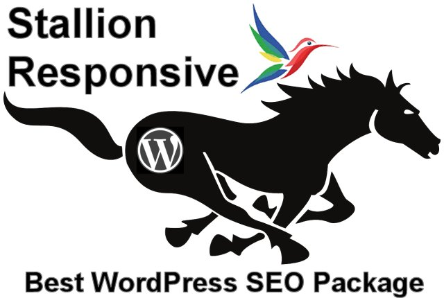 WordPress SEO Package