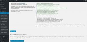 WordPress SEO Performance Theme Options