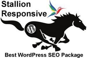 WordPress SEO Theme