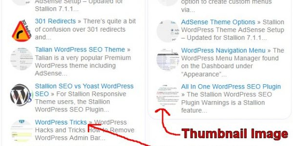 WordPress SEO Widget