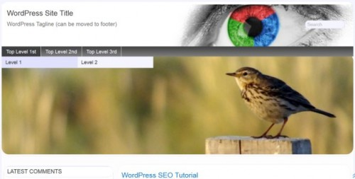 WordPress Theme Header Images