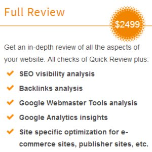 Yoast SEO Website Review